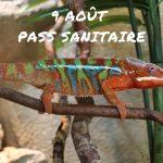 9 août – Pass Sanitaire